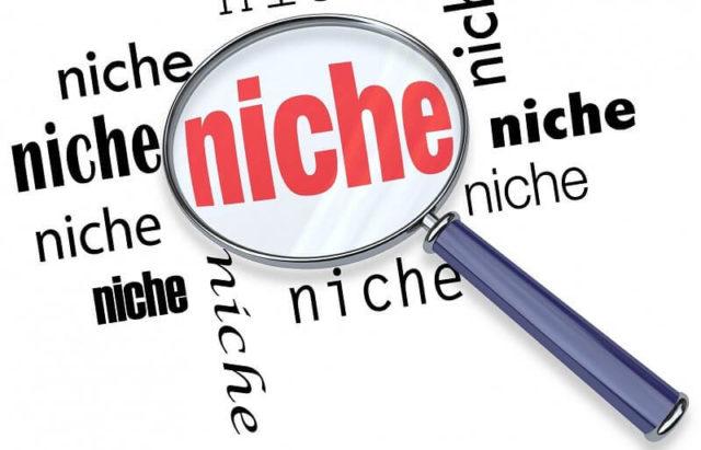 niche site example, niche site builder, niche site school review best amazon niche sites niche site project niche website ideas 2019, Niche website example? What is a niche and authority site?